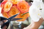 11 mẹo với hoa đẹp để làm thay đổi diện mạo căn phòng