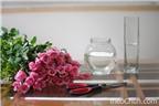 2 cách cắm hoa hồng thơm đẹp nhẹ nhàng