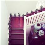 3 Cách trang trí cầu thang trang nhã cho nhà đẹp