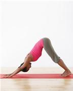 4 động tác thể dục giúp cải thiện sức khỏe sau Tết