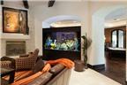 7 vị trí đặt bể cá theo phong thủy tuyệt vời nhất trong nhà