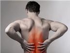 Bài thuốc đông y trị đau lưng