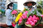 Bí quyết chọn mua và cách giữ hoa sen tươi lâu