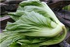 Bí quyết muối dưa cải ngon ăn chống ngán ngày Tết