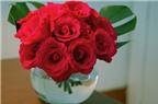 Các cách cắm hoa hồng để bàn đẹp trang trí nhà đón Tết