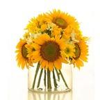 Cách cắm hoa để bàn đẹp trang trí nhà thêm lung linh