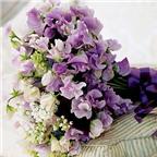 Cách chọn hoa tặng thầy cô giáo trong ngày 20/11