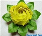 Cách gấp hoa sen bằng giấy đơn giản mà đẹp