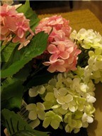 Cách làm cầu hoa xinh xắn cho phòng tươi tắn