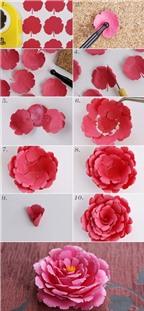 Cách làm hoa bằng giấy với 2 kiểu đơn giản và xinh xắn