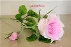 Cách làm hoa hồng bằng giấy nhún đẹp như hoa thật