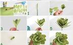Cách làm hoa hồng xanh bằng miếng xốp cực nhanh