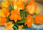 Cách làm hoa tulip bằng vải lụa đẹp như hoa thật