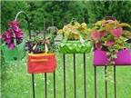 Cách làm mới sân vườn bằng đồ cũ