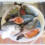 Cách nấu canh chua đầu cá hồi tuyệt ngon cho bữa trưa
