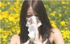 Cách phòng bệnh dị ứng thường gặp vào mùa xuân