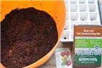 Cách trồng cà chua siêu nhanh vào mùa hè