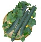 Các loại rau củ cực tốt với sức khỏe bà bầu