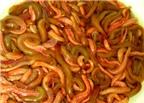 Điểm mặt những món ăn đặc sản từ sâu của ẩm thực Việt