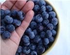 Dinh dưỡng  | Điều cần biết