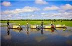 Du lịch mùa nước nổi, trải nghiệm nét đẹp lênh đênh