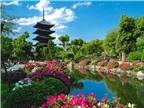 Hướng dẫn di chuyển tới những điểm đến tuyệt nhất của du lịch Kyoto