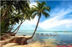 Kinh nghiệm du lịch - Kiến thức du lịch: Ẩm thực, văn hóa, địa điểm, nhà hàng