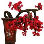 Làm sao để chọn hoa tết cho ngôi nhà của bạn?