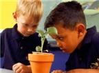 Làm sao để dạy trẻ tính kiên nhẫn?