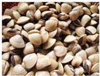 Làm sao để rửa sạch các loại ngao, sò, ốc?
