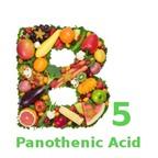 Lợi ích của vitamin B5