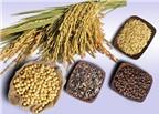 Lợi ích sức khỏe từ ngũ cốc