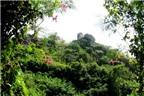 Lưu ý khi du lịch núi Sam ở Châu Đốc - An Giang