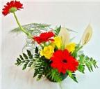 Mẹo cắm hoa lâu tàn