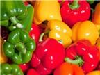 Một số rau quả nhiều vitamin C hơn cam