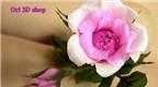 Những cách làm hoa hồng bằng giấy đẹp nhất