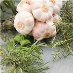 Những thực phẩm giữ ấm cơ thể mùa đại hàn