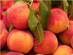 Những trái cây gây nóng bà bầu không nên ăn trong hè