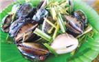 Ốc bướm - món ngon của biển miền Trung