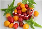 Salad cà chua que tươi ngon