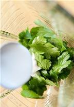 Salad ngon tuyệt với nước sốt chanh cốt dừa