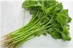 Tác dụng chữa bệnh của rau dền cơm
