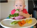 Thực phẩm nào gây dị ứng cho trẻ ăn dặm