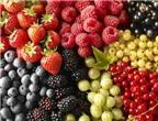 Thực phẩm ngừa bệnh Alzheimer