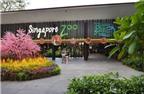 TripAdvisor liệt kê 50 điểm đến mang tính biểu tượng của du lịch Singapore