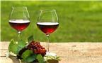 Uống rượu vang đỏ tốt cho thị lực