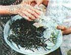 Món ăn côn trùng ở Campuchia