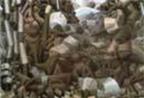 Fernand Leger - họa sĩ đa phong cách