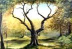 'Chu kỳ' - những cảm nhận về thế giới tự nhiên