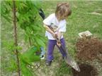 4 cách dạy trẻ yêu thiên nhiên
